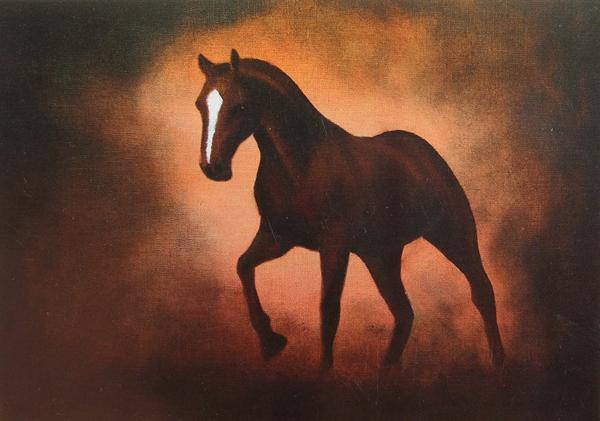 vy häst